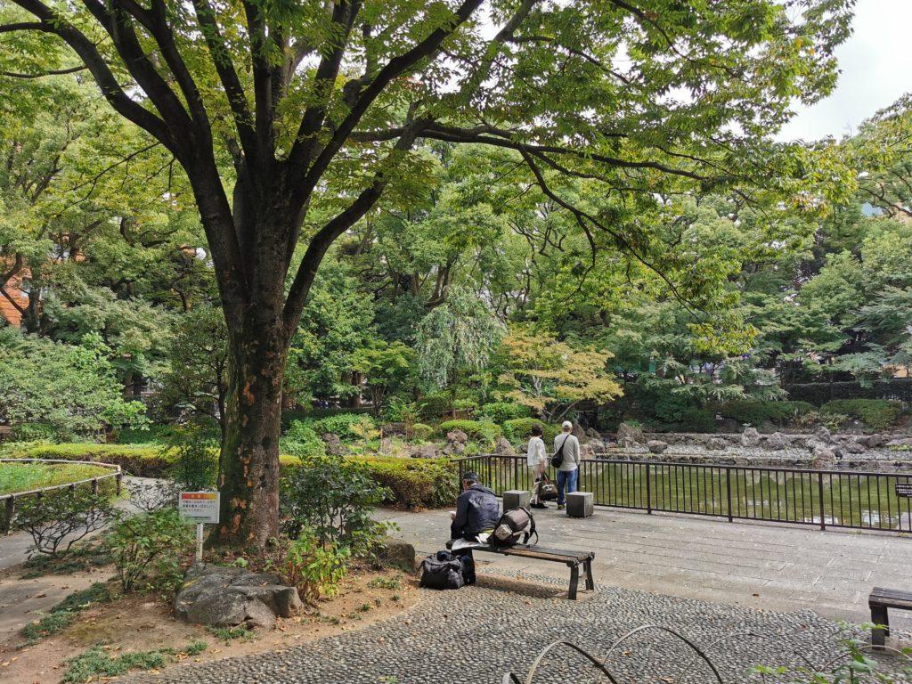 庭園の真ん中に大きな池があります。