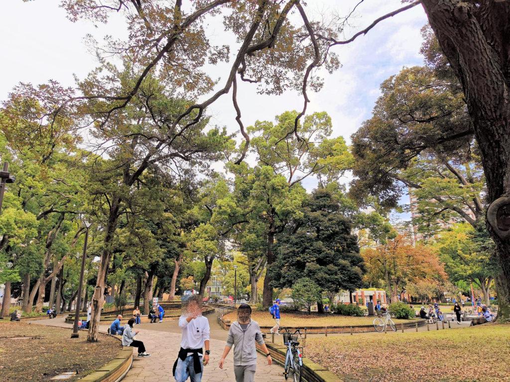 少し涼しくなってきて秋の様相を呈し始めた初秋の横浜公園