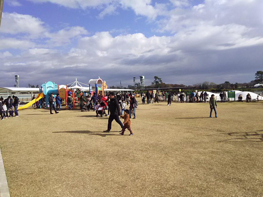 中山競馬場の馬場内広場にはアスレチック遊具が設置されている